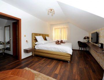 Hotel v rámci komplexu MAX PLAZA poskytuje svojím návštevníkom útulné ubytovanie v historickom centre Trnavy. Hotel je svojou polohou vhodný pre biznis návštevníkov rovnako ako pre turistov, ktorí sa chcú pokochať krásami Trnavy a priľahlých turistických atrakcií.